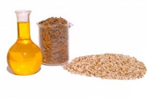 O óleo é eficiente no combate a gorduras e celulites do corpo.