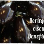 A berinjela promove uma vida mais saudável?