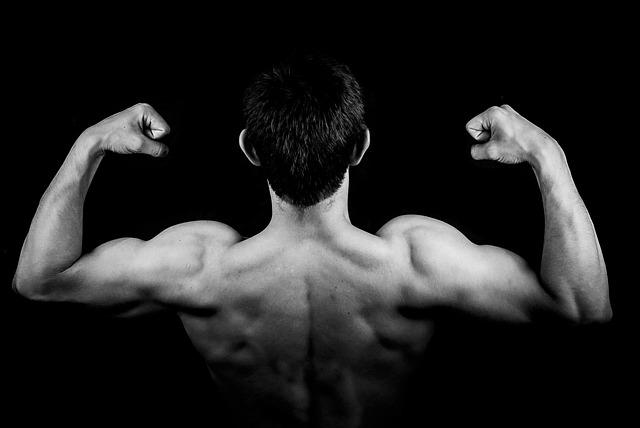 Os músculos são criados por massa magra.