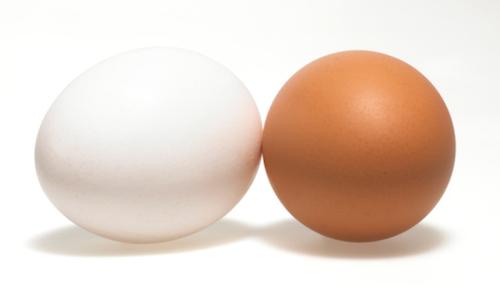 Não existe o melhor ovo, todos possuem as mesmas propriedades.