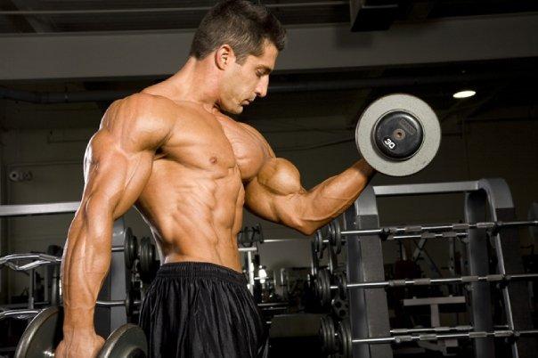 treinando-biceps